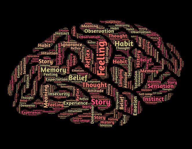 Brain Tools